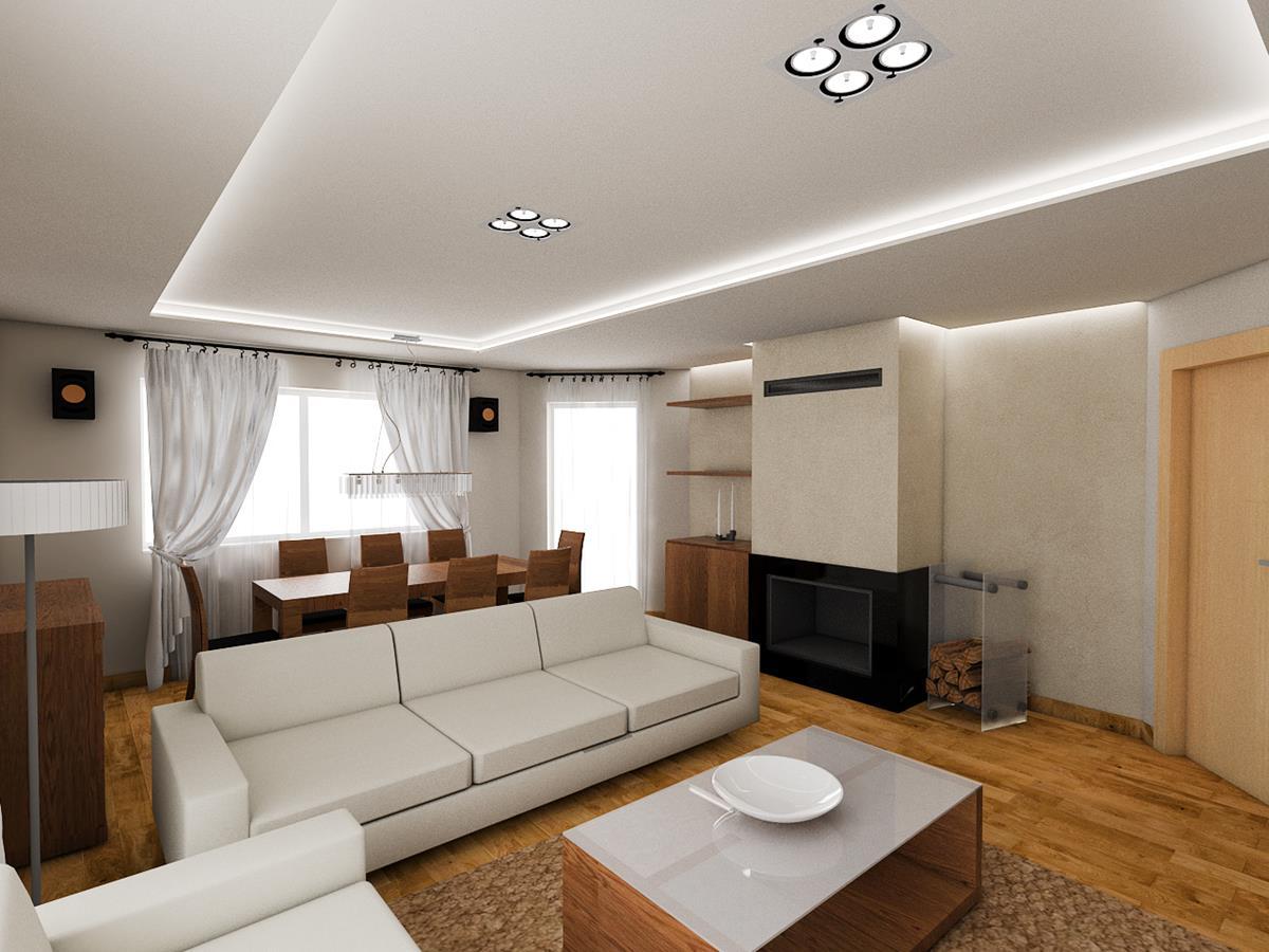 projekty domów z wnętrzami salon